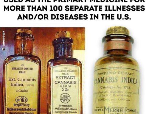Cannabimovone (CBM), a rare cannabinoid can sensitize cells to insulin